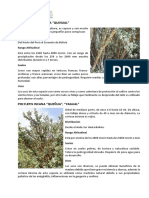Arboles y Arbustos de Puno