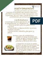 Macro Nutriment Os