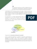 Analizando conceptos de cadena agroalimentaria.docx