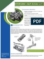 794299_Motor GM Vortec 4.3 LTS