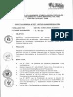 Directiva General n 007-2017 Normas Para La Aplicaci n Del r Gimen Laboral Especial de Contratacion