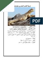 تربية الضب المصري ميكروليبس.pdf