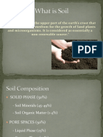Soil and Radiation Pollution