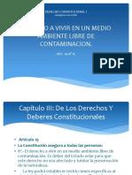 DERECHO CONSTITUCIONAL I. Derecho a Vivir en Un Medio Ambiente Libre de Contaminacion.