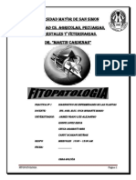93031278-INFORME-DE-FITOPATOLOGIA.docx
