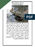 ورل نيلي Nile Monitor