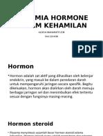 Ppt Biokimia Hormone Dalam Kehamilan Allycia