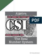 Csi Algebra Unit 2 the Real Number System