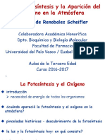 4.- La Fotosíntesis y La Aparición Del Oxígeno