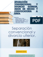 Separación Convencional y Divorcio Ulterior, Union De