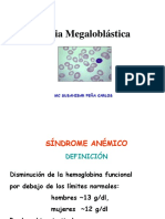 7. Anemia Megalo
