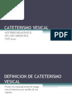 CATETERISMO VESICAL2003