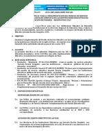 DIRECTIVA REGIONAL JEC PUNOcorrregido.docx