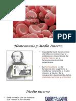 La Homeostasis en El Medio Interno