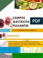 65579456-CAMPOS-ELECTRICOS-PULSANTES.pptx