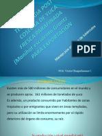Tecnologia Post Cosecha de Yuca Ppt