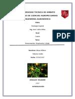 Fermentacion Fisiologia Vegetal