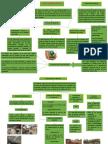 Trabajo de Análisis Ambiental Del Perú