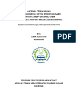 LP-stemi DHB.docx
