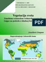 Vezba 11_Tajga.pptx