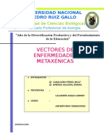 Enf. Metaxenicas