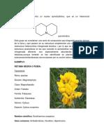 alcaloides teraupeticos y farmacologicos