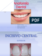 anatomiadentaldearcadasuperiorpermanentes-140123164445-phpapp02 (1).pptx