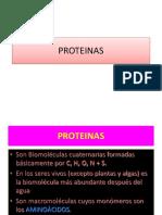 02 Tema Proteinas