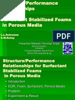 Porous Media Maria