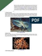 Conto Hewan Laut