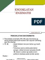 PENCOKLATAN ENZIMATIS revisi.ppt