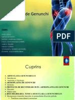 Optional.gr.6 Artroplastia de Genunchi