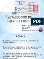 metabolismodecalcioyfosforo-110224082227-phpapp01