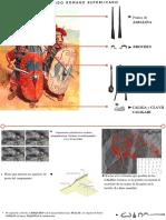 Armas romanas y análisis de los campamentos