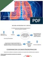 exposicion de fisiologia 2 ventilacion.pptx