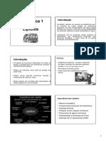 Lipidios AULA.pdf