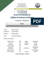 thèse compléte.pdf