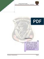 Trabajo de Investigacion CASO-BARRIOS-ALTOS-docx.docx