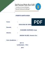 Informe Puerto Santa Rosa
