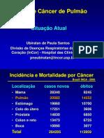 APRESENTAÇÃO - QUÍMICOS SÍLICAS E CANCER DO PULMÃO.ppt
