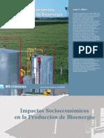 Script-tmp-Inta- Impactos Socioeconomicos en Produccion de Bioen