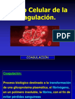 Modelo Celular de la coagulacionActual