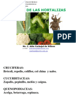 Cruciferas y Cucurbitaceas 2017 (1)