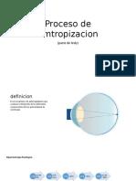 proceso de metropizacion.pptx