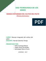 Guia_Tecnica_de_Palto.docx