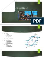 Sistema Oxidativo
