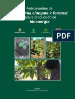 Libro Paulownia.pdf