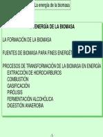 Biomasa_Presentacion