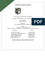 261730767-Acetato-de-Plata-Laboratorio.doc