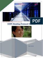 OSPF Myanmar